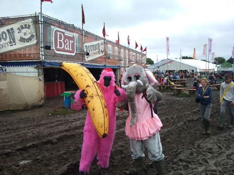 glastonbury furries