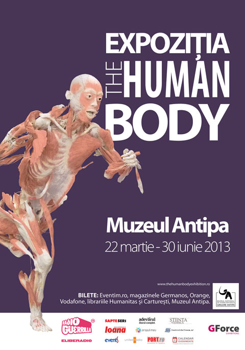 the human body afis